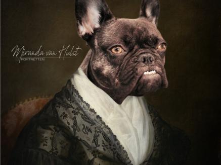 Jouw huisdier in de stijl van de oude meesters - MvH Fotografie, fotograaf in Hellevoetsluis