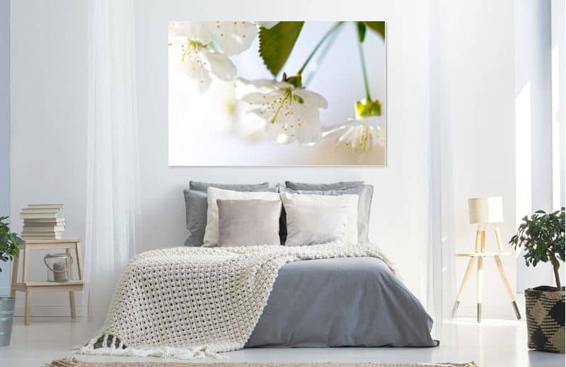 Mooie bloesem in de lente - werk aan de muur - MvH Fotografie - Fotograaf in Hellevoetsluis