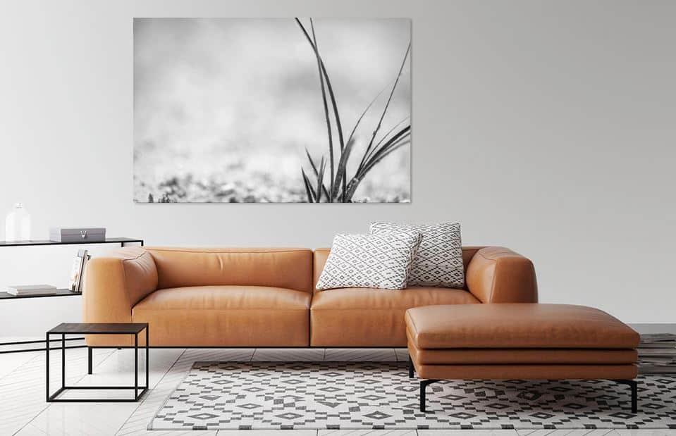 'Gras in zwart-wit' door Miranda van Hulst
